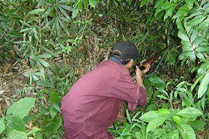 Đi săn, bắn nhầm người làng vì tưởng là thú rừng