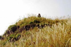 Chuyện độc đáo quanh chiếc chum vàng hóa đá ở xứ Thanh