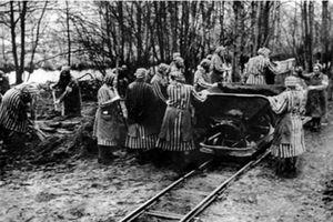 Trại tập trung Ravensbruck - trại nữ tù nhân khét tiếng (Phần 2)