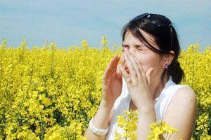 Mùa thu 'quyến rũ' lại làm cho bạn dễ mắc bệnh. Vì sao vậy?