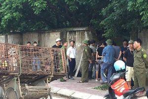 Đàn chó cắn chết bé trai ở Hưng Yên được xử lý thế nào?
