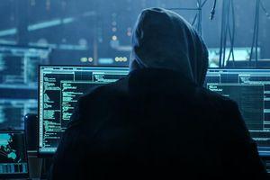 Nga: Cảnh báo về tội phạm công nghệ cao