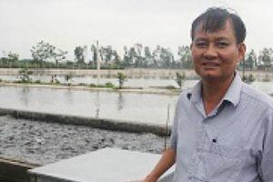 'Vứt' 80 tỷ xuống 'sông cá', bắt 1 lứa dân cả tỉnh ăn không hết