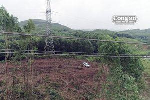 Khai thác gỗ vi phạm lưới điện 500kV