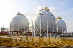 Nguồn cung khí cho Cụm công nghiệp Khí - Điện - Đạm Cà Mau sẽ sụt giảm mạnh