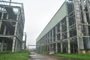 Bài 5: Nên cho Ethanol Phú Thọ được phá sản!