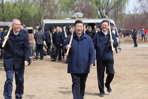 Ông Tập Cận Bình cùng trồng cây với học sinh Trung Quốc