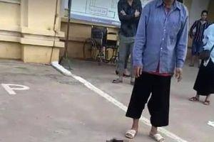 Bé trai 11 tuổi ở Sơn La tử vong sau 3 tháng bị chó cắn
