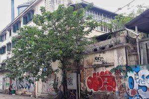 Kỳ 1: Tranh bích họa đường phố và nghệ thuật mong manh