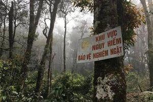 Vĩnh Phúc: Nhóm người bị các đối tượng đe dọa, cướp tài sản trong rừng