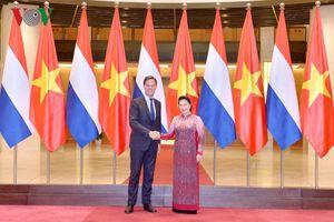 Chủ tịch Quốc hội hội kiến Thủ tướng Vương quốc Hà Lan