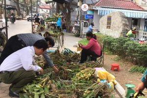 Chợ hoa Hoàng Hoa Thám nhộn nhịp quanh năm