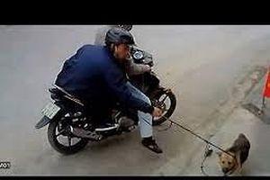 Nhóm đối tượng trộm chó 'nổi hứng' cưỡng hiếp hai thiếu nữ