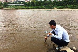 Cá chết trên sông Hồng là do người dân 'ruốc' cá
