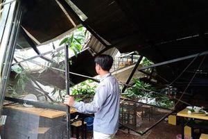 Hà Nội: Cành cây lớn gãy đổ vào quán ăn, nhiều người tháo chạy
