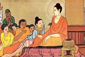 Ngộ về hạnh Từ Bi trong giáo lý nhà Phật