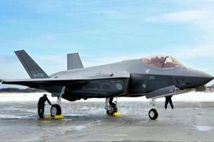 Nhật Bản tạm dừng hoạt động của toàn bộ máy bay quân sự