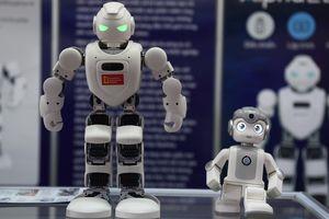 Robot lạ, đồ gốm sứ hàng chục triệu gây chú ý tại Hà Nội