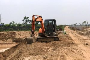 Bãi bồi sông Hồng bị tàn phá nghiêm trọng