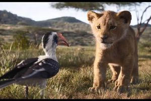 Disney tung trailer 'Vua sư tử 2019'
