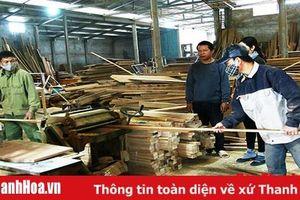 Công tác an toàn lao động tại các cơ sở sản xuất, chế biến gỗ còn bị xem nhẹ