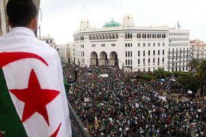 Algeria ấn định ngày 4/7 bầu cử Tổng thống
