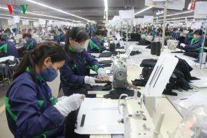 37% công nhân ngành may lương không đủ sống, phải đi vay nợ