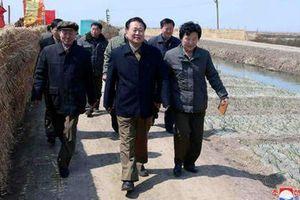 Đồn đoán bất ngờ về mối quan hệ giữa tân Chủ tịch Quốc hội Triều Tiên và ông Kim Jong Un