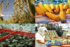 Xuất khẩu Việt Nam đạt nhiều kỷ lục, hàng hóa vươn tới hầu hết thị trường thế giới