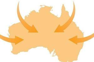 Làm thế nào để tăng cơ hội xuất khẩu vào Australia nhờ CPTPP?