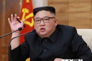 Tổng thống Nga Putin khẳng định thiện chí hợp tác với Triều Tiên