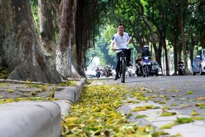 Hà Nội đẹp say lòng trong mùa lá rụng