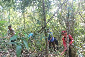 Điện Biên: Điều tiết chi trả dịch vụ môi trường rừng