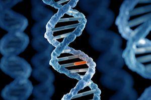 Đột biến gien biến một phụ nữ thành 'siêu nhân'