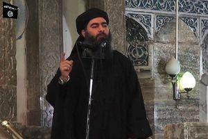Trùm khủng bố IS đang trú ẩn ở Syria