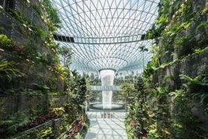 Cận cảnh quần thể mới chứa thác nước cao nhất thế giới bên trong sân bay Singapore