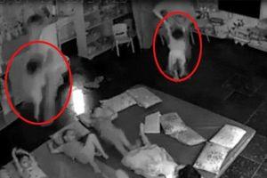 Vụ giáo viên cầm trẻ quăng xuống nền nhà bắt đi ngủ: Đình chỉ hoạt động trường mầm non