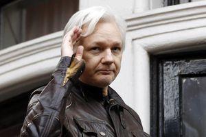 Từ vị khách được bảo vệ, ông trùm WikiLeaks đã 'thất sủng' thế nào?