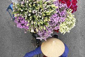 Tháng những mùa hoa