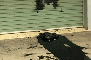 Hải Phòng: Nhóm người đổ cả xô chất thải 'khủng bố' công ty taxi