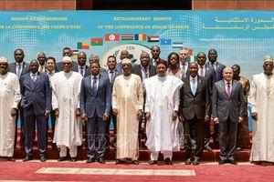 Hội nghị thượng đỉnh các nước Sahel-Sahara: Kêu gọi chuyển tiếp hòa bình ở Sudan