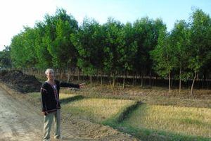 Sông Hinh: Cần xem xét quyền lợi cho người dân tự nguyện giao đất
