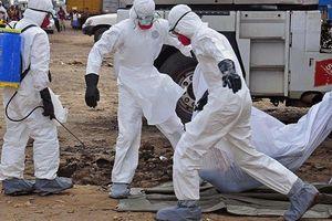Ebola bùng phát dữ dội, hơn 800 người chết ở Congo