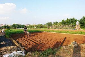 Vì sao nhiều hợp tác xã chưa đưa được hàng nông sản vào chuỗi cung ứng giá trị? - Kỳ 2: Muôn vàn khó khăn