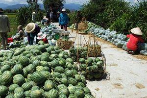 Nhiều nông sản, thực phẩm tăng giá trở lại