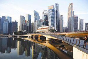 Câu chuyện thành công của ngành tài chính Singapore