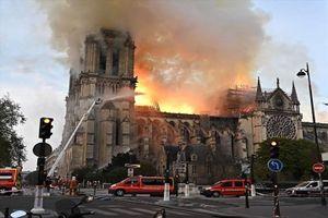 Du học sinh Việt: Pháp sẽ xây dựng lại Nhà thờ Đức Bà Paris từ tàn tro