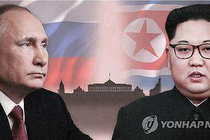 Nga xác nhận đang chuẩn bị cho thượng đỉnh giữa Tổng thống Putin và lãnh đạo Triều Tiên
