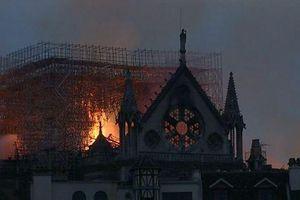 Vô số đề nghị giúp Pháp tái thiết Nhà thờ Đức Bà