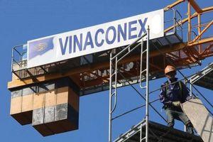 Vinaconex hoãn Đại hội cổ đông tới khi Hội đồng quản trị được phục hồi hoạt động